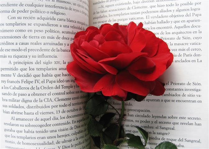 Top 10 Romantische Boeken voor Vrouwen