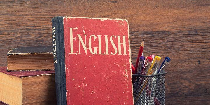 Engelse Literatuur Boeken