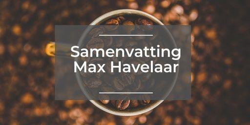 Max Havelaar Samenvatting Info Aanvullende Uitleg