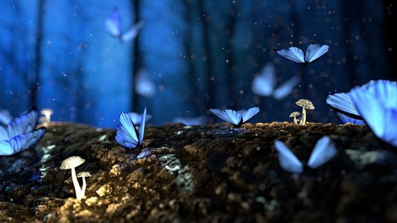 Fantasie wereld met blauwe vlinders